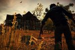 State of Decay - vignette