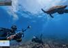 Google Street View : exploration sous-marine d'îles protégées du Brésil