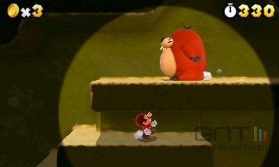 Super Mario 3D Land (9)