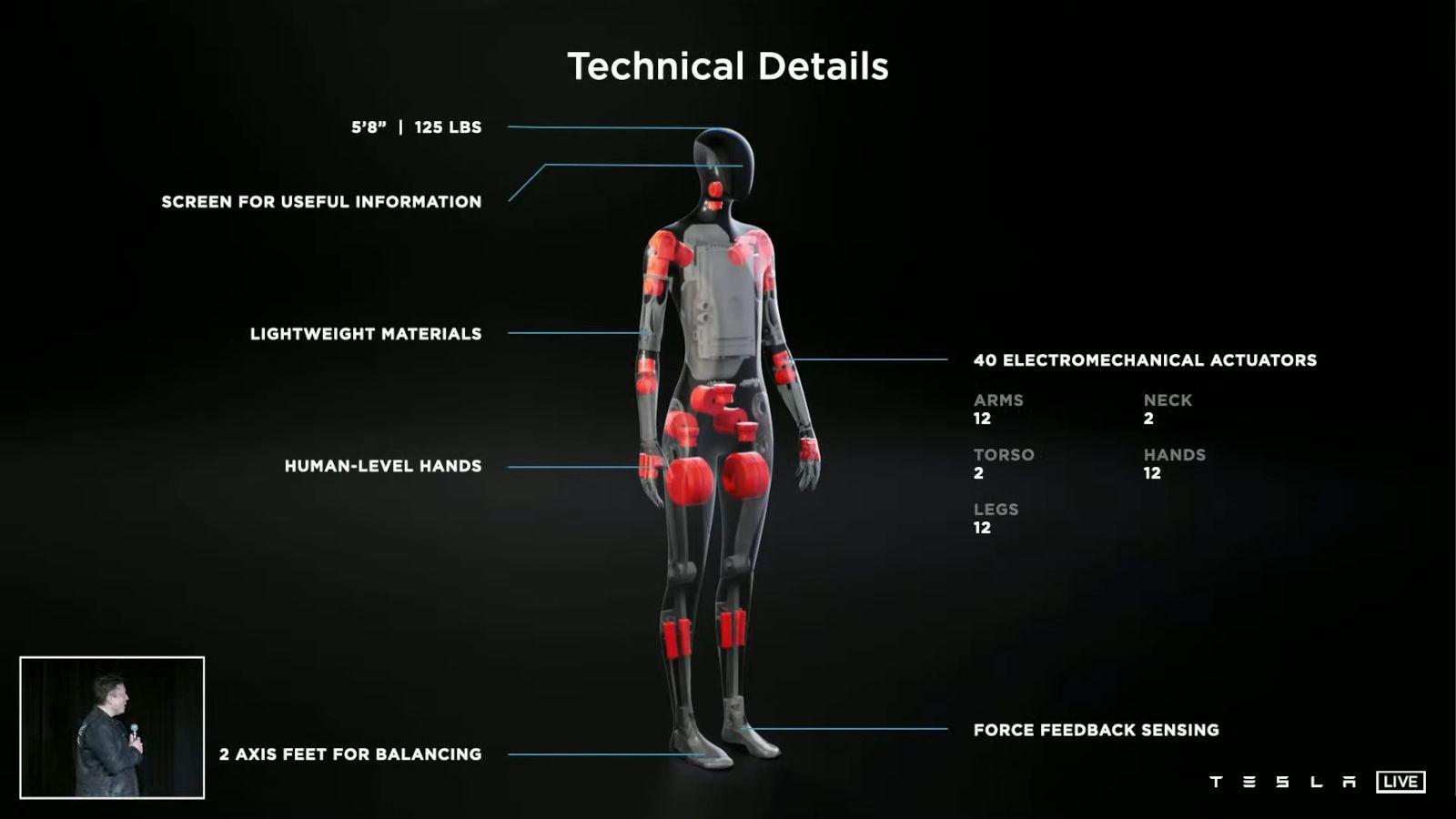 tesla-bot-details