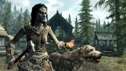 The Elder Scrolls 5 Skyrim (2)