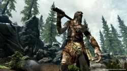 The Elder Scrolls V Skyrim - Image 23