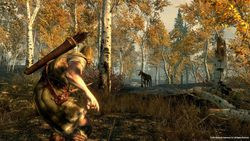 The Elder Scrolls V Skyrim - Image 24
