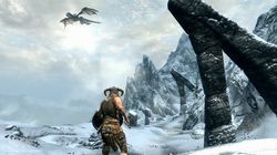 The Elder Scrolls V Skyrim - Image 8