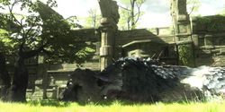 The Last Guardian - 11