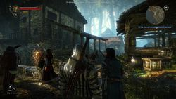 The Witcher 2 - Image 100