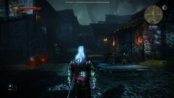The Witcher 2 - Image 116