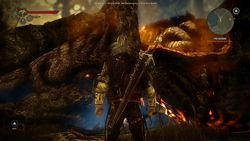 The Witcher 2 - Image 117
