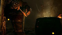 The Witcher 2 - Image 4