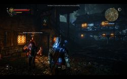 The Witcher 2 - Image 94