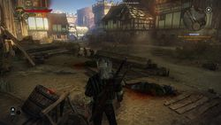 The Witcher 2 - Image 97