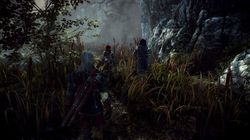 The Witcher 2 - Image 9