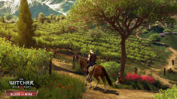 The Witcher 3 Blood and Wine - 3