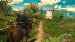 The Witcher 3 Blood and Wine - 5