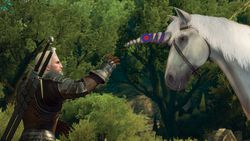 The Witcher 3 Blood and Wine - 6