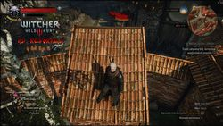 The Witcher 3 HD Reworked - 1