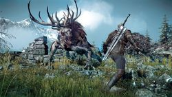 The Witcher 3 : Wild Hunt - 1