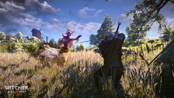 The Witcher 3 Wild Hunt - 1