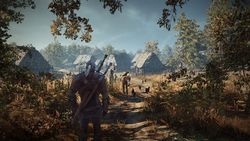 The Witcher 3 : Wild Hunt - 2