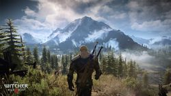 The Witcher 3 Wild Hunt - 2
