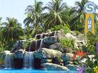 Tropic Waterfall : un fond d'écran animé