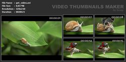 Video Thumbnails Maker screen2