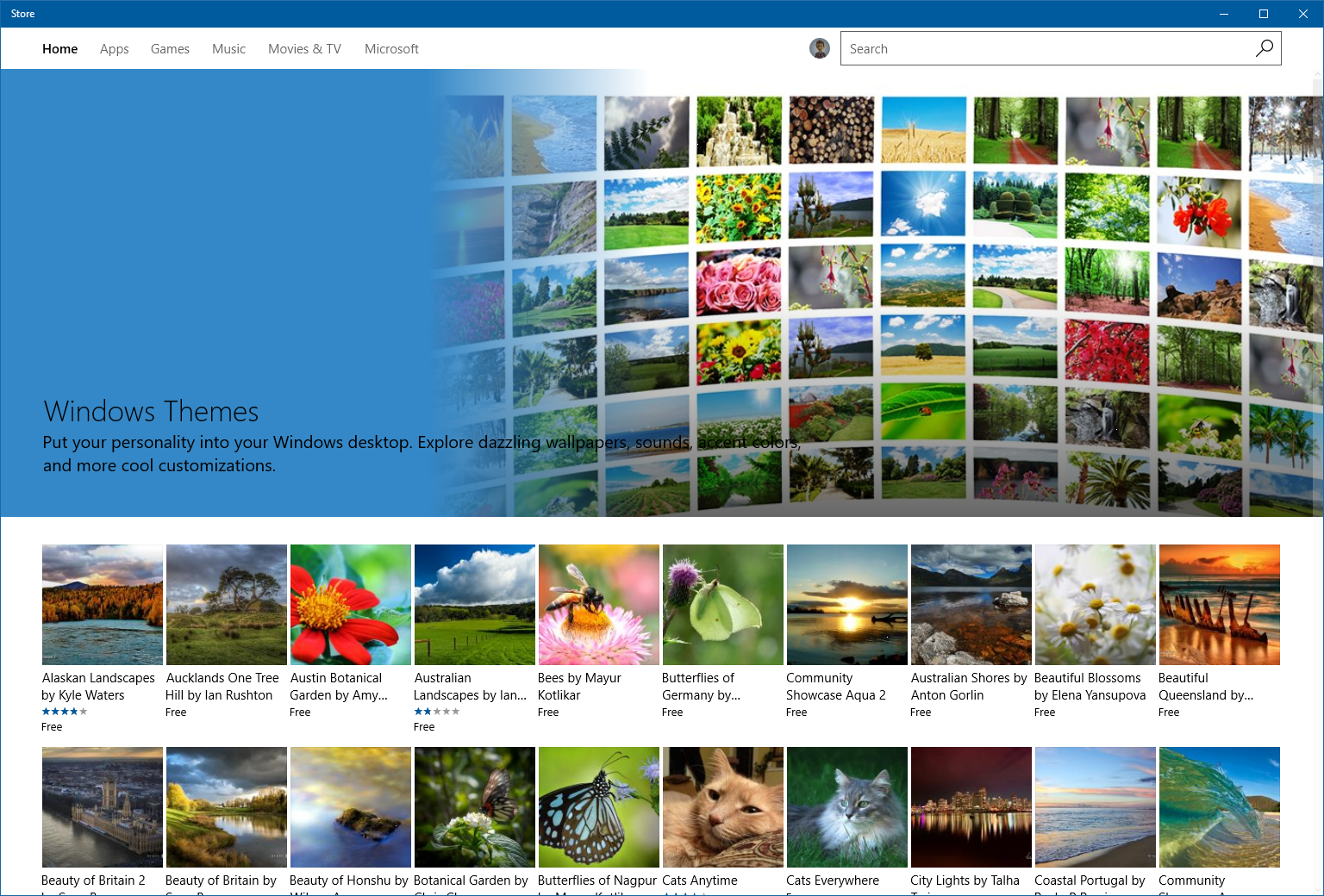 W10-build-15007-Store-Themes