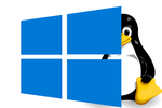W10-Linux