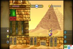 Wario The shake dimension (8)