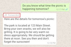 WhatsApp-message-transfere