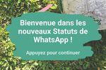WhatsApp-Statuts