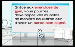 Wii Fit (18)
