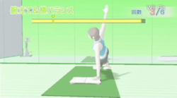 Wii fit 2