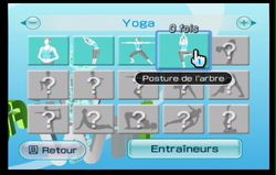 Wii Fit (30)
