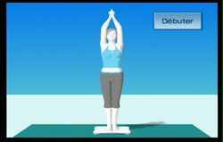 Wii Fit (76)