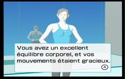Wii Fit (78)
