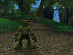 World of Warcraft Cataclysm (11)