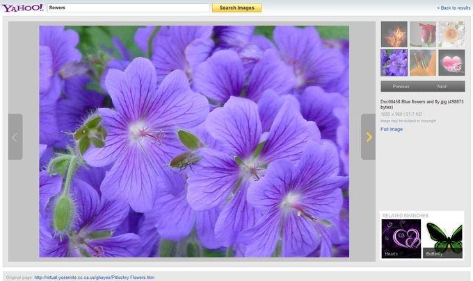 yahoo-image-search-diaporama