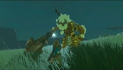 Zelda breath of the wild DLC1_10