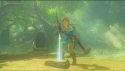 Zelda breath of the wild DLC1_14
