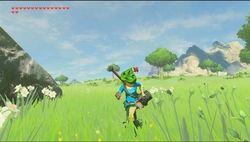 Zelda breath of the wild DLC1_16