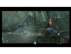 Zelda Twilight Princess Wii - img 13