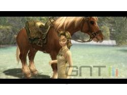 Zelda Twilight Princess Wii - img 34
